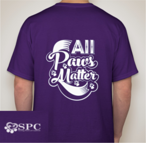 APM Purple